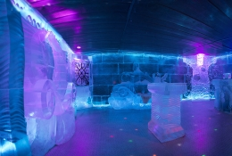 Ice Bar + Club Entry
